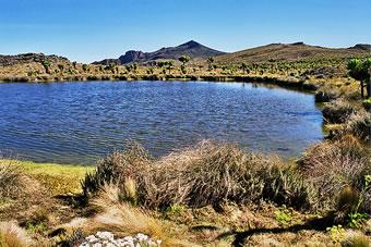 jackson pool Mount Elgon
