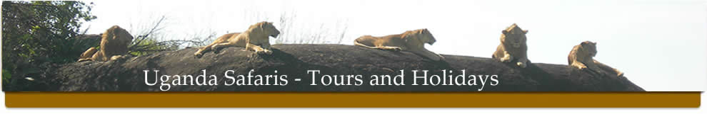 Uganda Safaris, Tours and Holidays in Uganda with Abacus Uganda Safaris